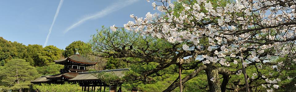 あの日本を甦らせよう 京都からの発信